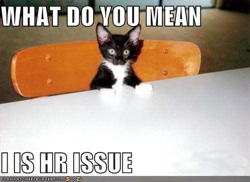 WHAT DO YOU MEAN   I IS HR ISSUE
