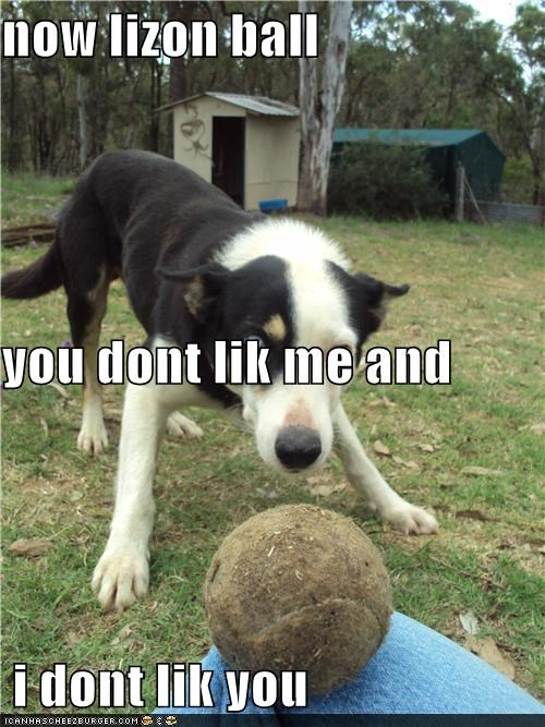 now lizon ball  you dont lik me and  i dont lik you