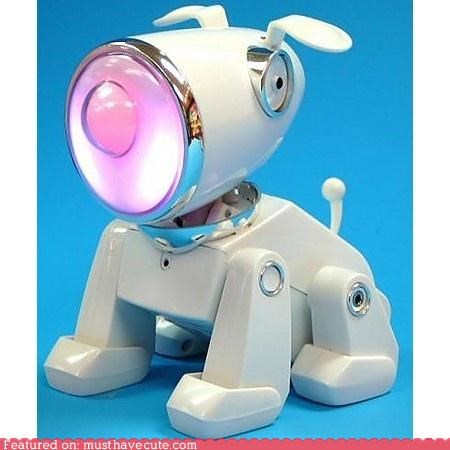 dogs,electronic,Music,puppy,robot,speaker