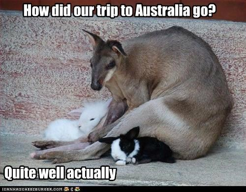 How did our trip to Australia go?