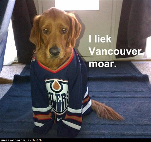 bummer,edmonton oilers,golden retriever,hockey,Sad,sad face,sports,vancouver canucks