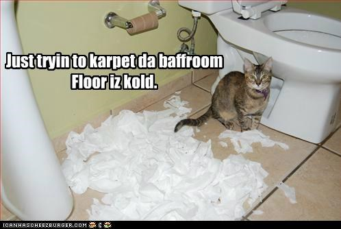 bathroom,caption,captioned,carpet,cat,cold,excuse,explanation,floor,just,mess,toilet paper,trying
