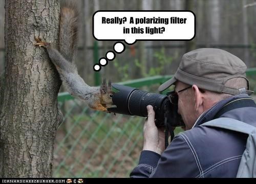 Really?  A polarizing filter in this light?