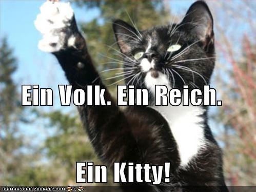 caption,captioned,cat,german,heil,hitler,hitler stache,kitten,lolwut