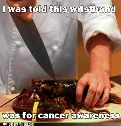 animals,cancer,cancer awareness,cancer bracelet,cancer wristband,cooking,food,lobster,wristband,yellow bracelet,yellow wristband