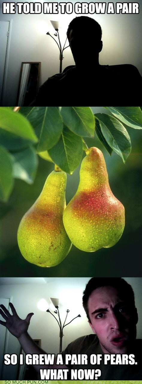 grow a pair,homophone,homophones,lolwut,oneupsmanship,pair,pear,pears,punception