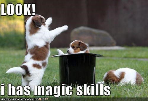LOOK!   i has magic skills