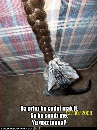 attend,braid,caption,captioned,cat,do want,noms,prince,question,rapunzel,replacement,rescue,tuna,unable