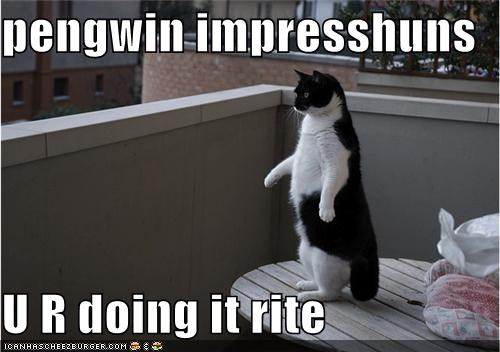 pengwin impresshuns  U R doing it rite