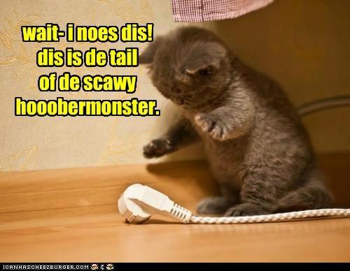 wait- i noes dis!dis is de tail of de scawy hooobermonster.