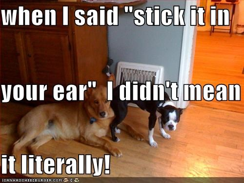 "when I said ""stick it in  your ear""  I didn't mean  it literally!"