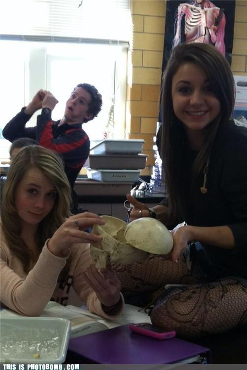 anatomy,bj,Good Times,learning,lesson,school,skull