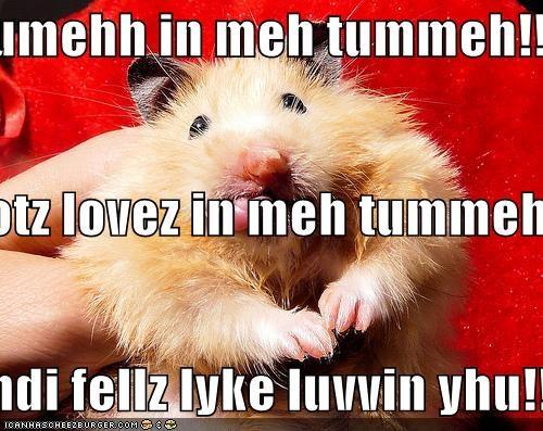 yumehh in meh tummeh!! I gotz lovez in meh tummeh!! andi fellz lyke luvvin yhu!!