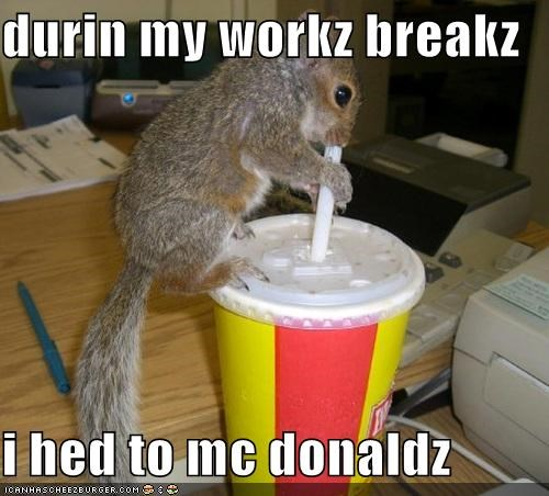 durin my workz breakz   i hed to mc donaldz