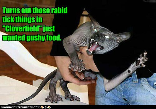 angry,caption,captioned,cat,cloverfield,gushy food,just,rabid,sphynx,things,tick,truth,turns out,want