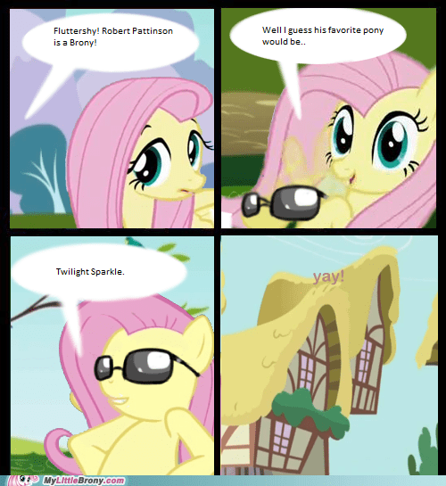Fluttershy Accepts All Bronies