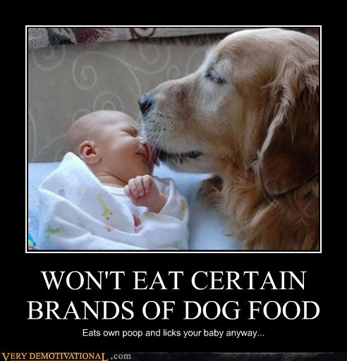 WON'T EAT CERTAIN BRANDS OF DOG FOOD