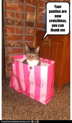bag,caption,captioned,cat,crotchless,damage,favor,Hall of Fame,later,me,now,panties,thank,victorias secret,your