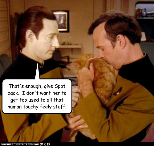 brent spiner,cat,data,spot,Star Trek,touchy feely