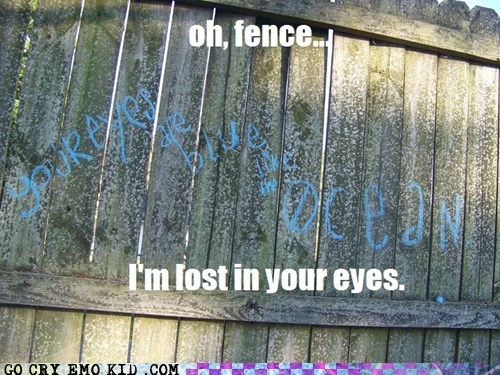 My Fence's Eyes are Bluer than the Ocean