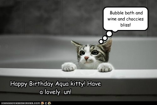 Happy Birthday Aqua kitty! Have  a lovely  un!