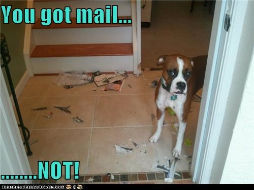 You got mail...  ........NOT!
