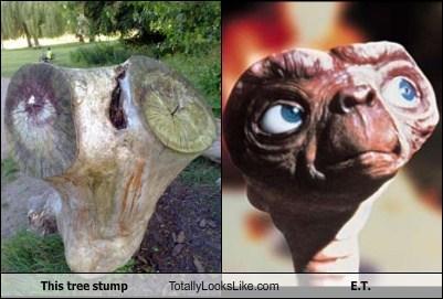 ET,funny,TLL,tree stump