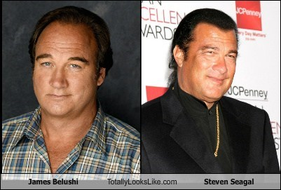 James Belushi Totally Looks Like Steven Seagal