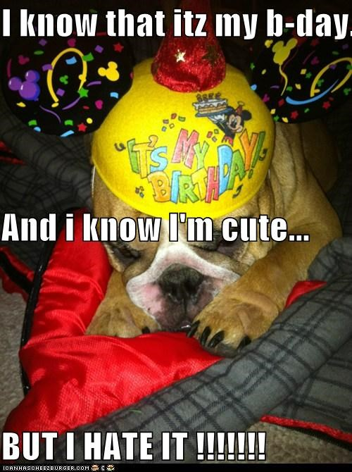 I know that itz my b-day... And i know I'm cute... BUT I HATE IT !!!!!!!