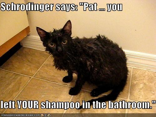 "Schrodinger says: ""Pat ... you  left YOUR shampoo in the bathroom."""