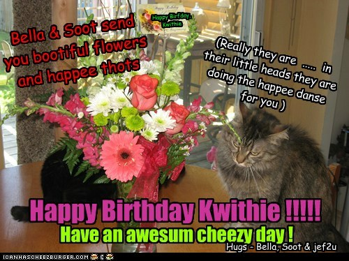Happy Birfday, Kwithie