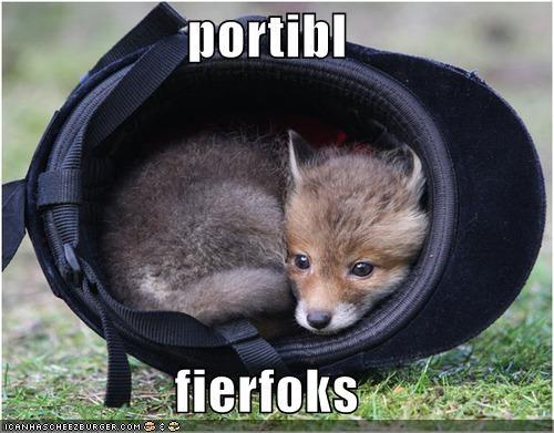 dogs,firefox,foxes,helmet,internet,loldogs,software,wild dogs