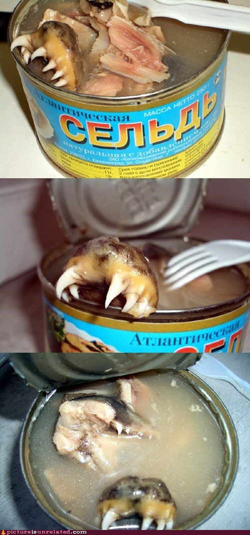 Russian Canned Food For Real Men