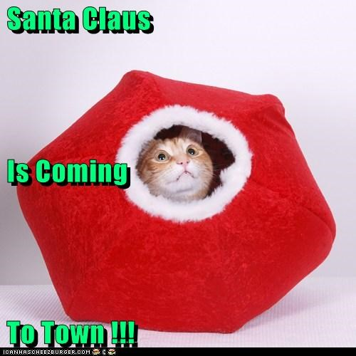 Santa Claus  Is Coming  To Town !!!
