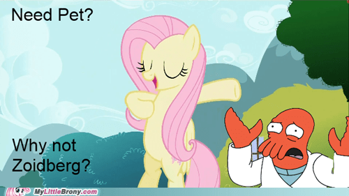 Zoidberg is best pony