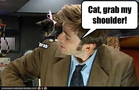 adventure,cat,David Tennant,doctor who,X Grab My Y
