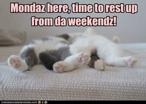 Monday is here, time to rest up from the weekend!