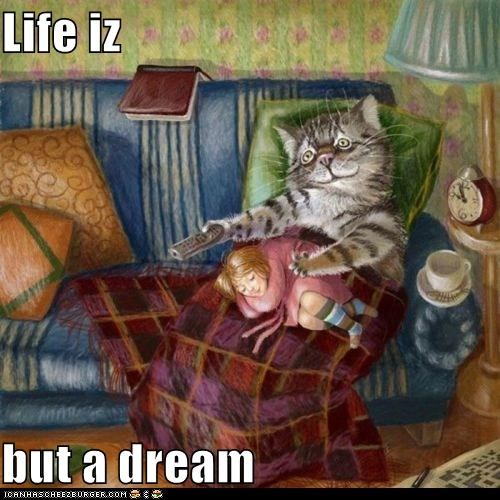 Life iz   but a dream