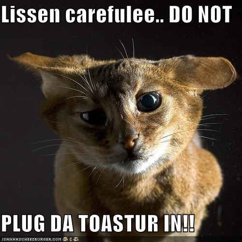 Lissen carefulee.. DO NOT  PLUG DA TOASTUR IN!!