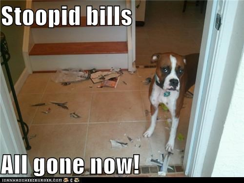 Stoopid bills  All gone now!