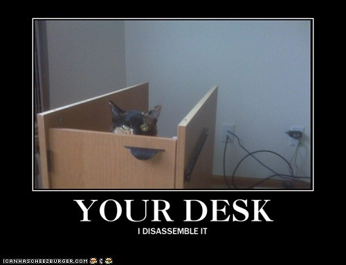 action,caption,captioned,cat,desk,disassemble,foreboding,I,mess,your