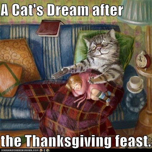 A Cat's Dream after  the Thanksgiving feast.