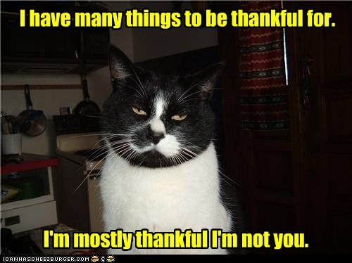 I have many things to be thankful for.