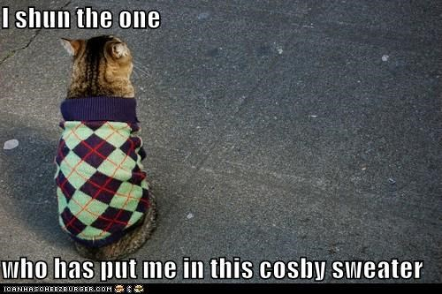 I shun the one  who has put me in this cosby sweater