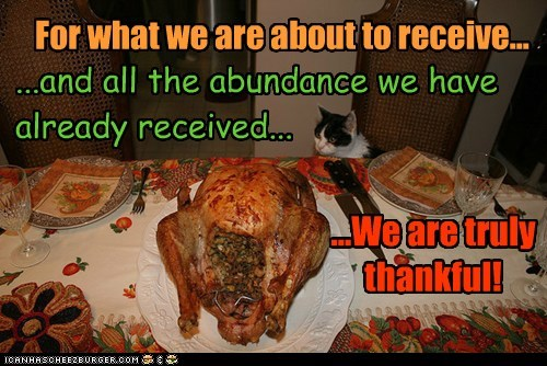 Happy Thanksgiving, Everyone!