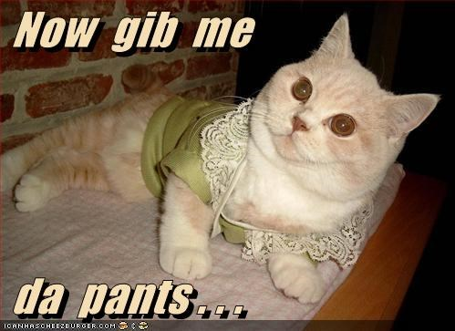 Now  gib  me   da  pants . . .