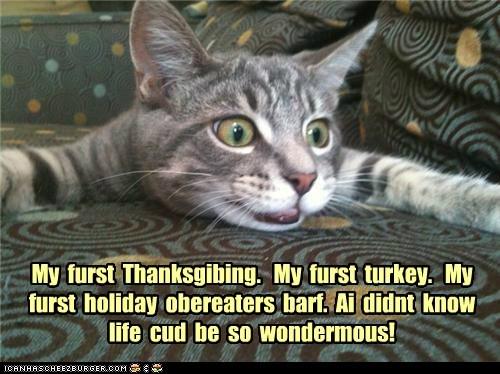 My  furst  Thanksgibing.   My  furst  turkey.   My  furst  holiday  obereaters  barf.  Ai  didnt  know  life  cud  be  so  wondermous!