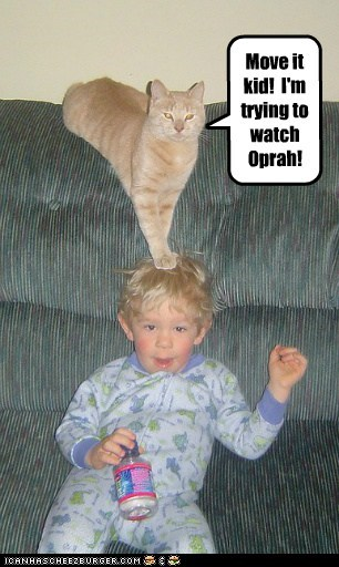 Move it kid!  I'm trying to watch Oprah!