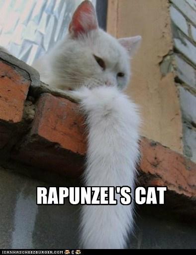RAPUNZEL'S CAT