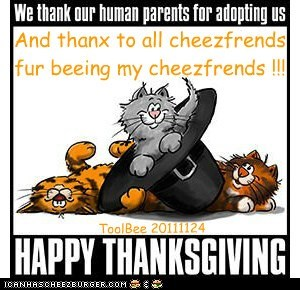 Thanx to all cheezfrends fur beeing cheezfrends !!!